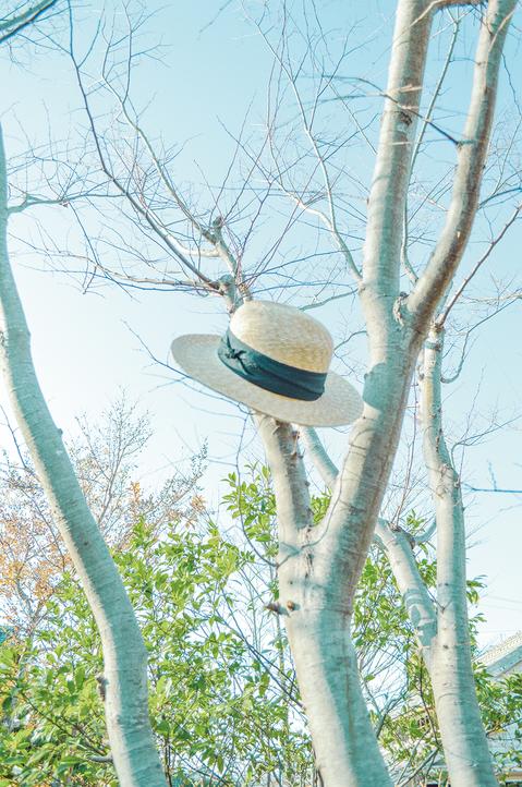 sashiki_photo_03.jpgのサムネイル画像